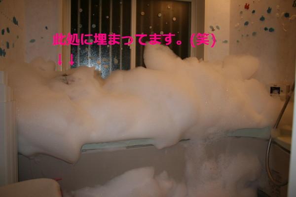 Img_5815_11