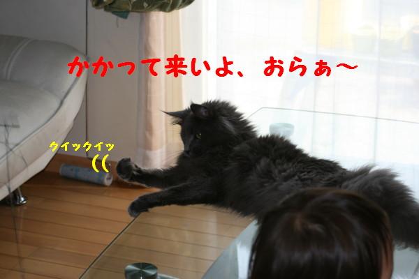 Img_5949_1