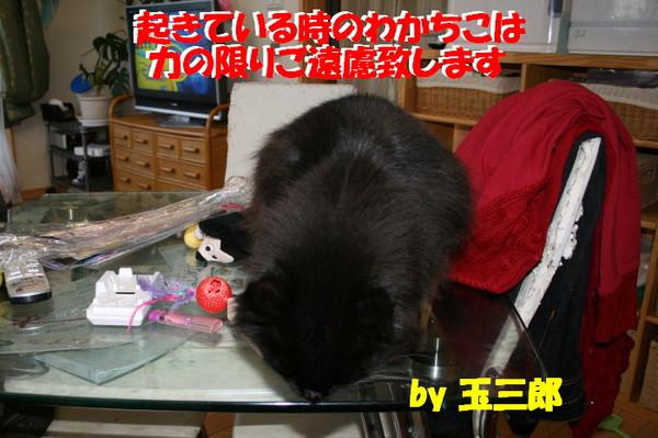 Img_77261_1