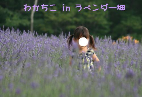 Img_8467_1_2